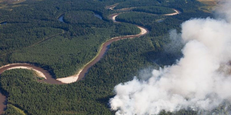 Aerial,View,Of,Wildfire,In,Forest